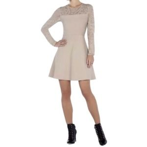 Bcbg Maxazria Dress Beige Fit & Flare Lace XS